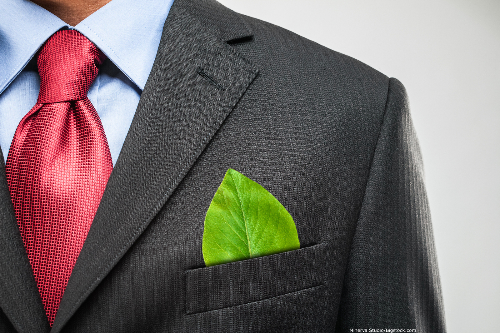 man in suit with leaf pocket square